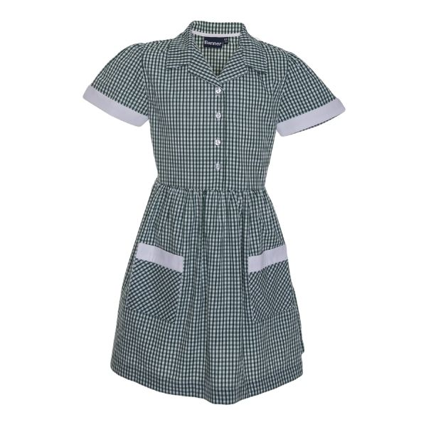 View larger image of Hillside Community Primary Summer Dress Green Gingham