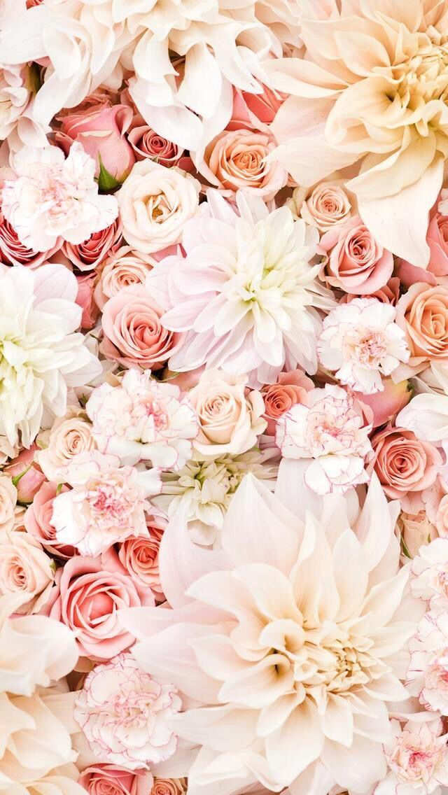 iPhone pink flowers wallpaper