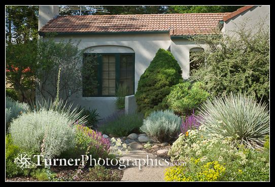 low water front yard landscaping - Google Search