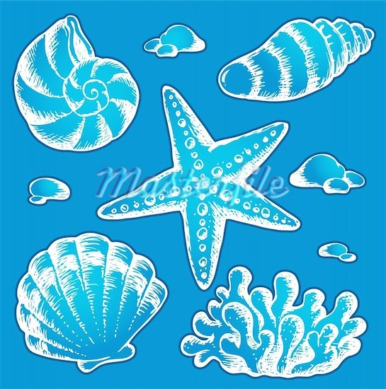 Sea shells drawings 2 - vector illustration. Stock Photos