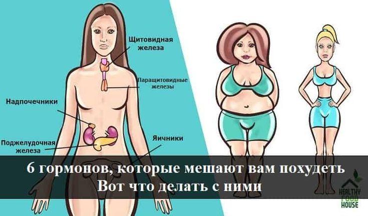 Щитовидная Железа Не Дает Похудеть.