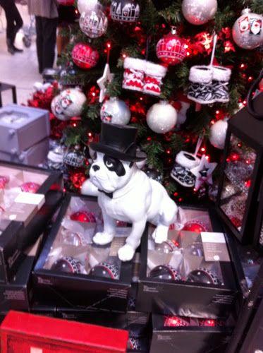 Kids en Nord: C'est Noel à Floralux