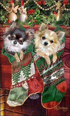 Сайт http://www.sweeneyholidaydogar<wbr />t.com/Эта американская художница живет в Флориде. В ее...