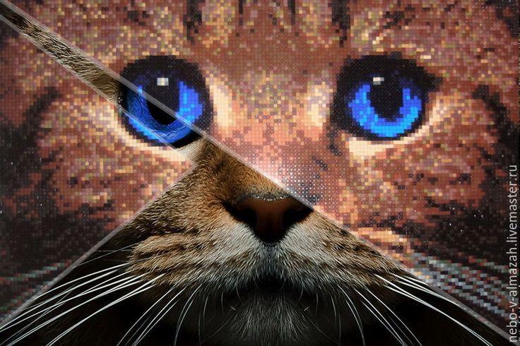 Купить Алмазная вышивка «Синеглазый кот», 27 х 38 см - алмазная вышивка, алмазная мозаика