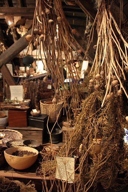 Herbs: Herbalist's room.