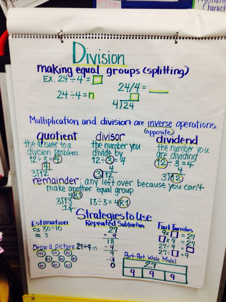 misconceptions in mathematics multiplication and division 5 misconceptions in elementary mathematics five of the most common math misconceptions are addressed  math intervention owl themes math multiplication division.