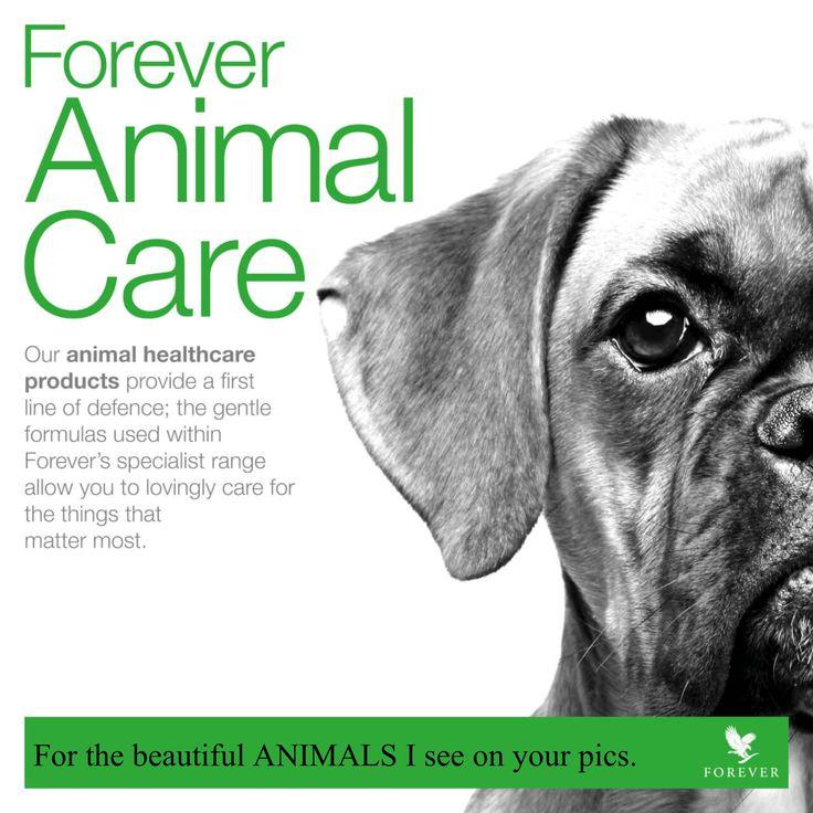 Animal lovers, love animals ❤️