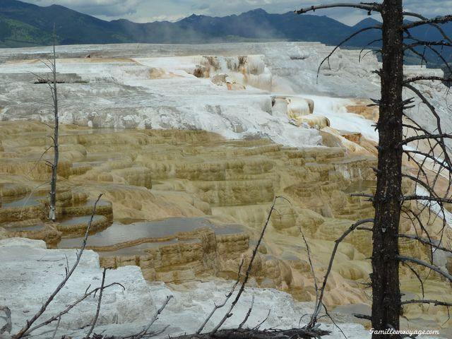 Yellowstone USA Souvenirs de voyage en camping car USACanada