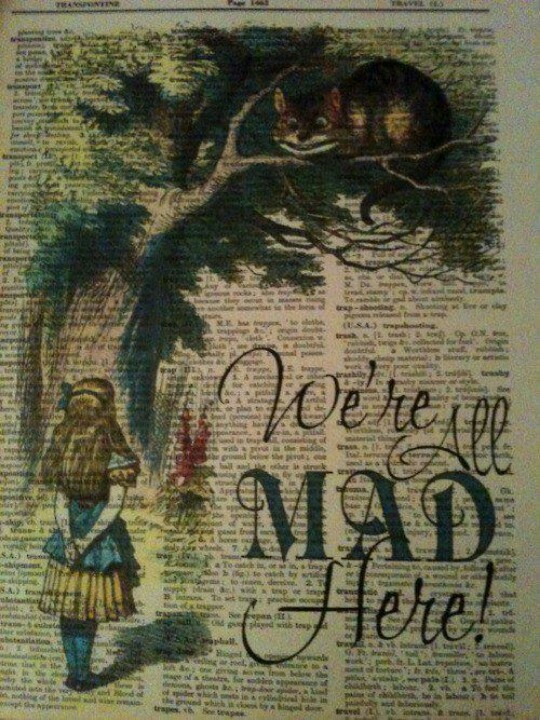 75 best all things alice images on pinterest wonderland