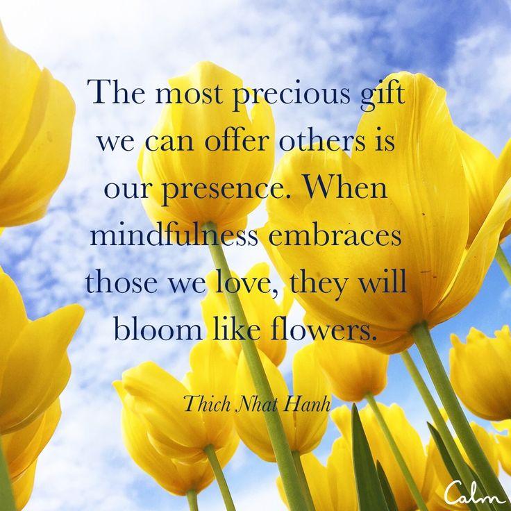 #dailycalm #mindfulness #flowers