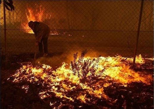 At first residents battled to defend their property.   50 Surreal Images From Sydney's Bushfire Crisis