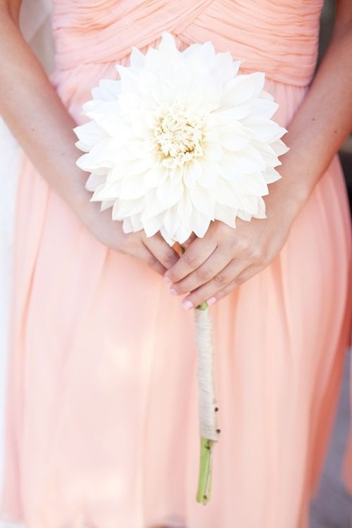 Single-Flower Dahlia Bridesmaid Bouquet | Brides.com