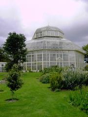 National Botanic Gardens-near Gravediggers Pub and Glasnevin Forest