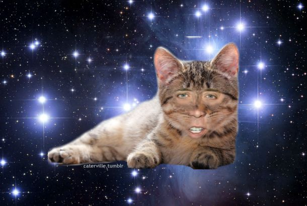 Nicolas Cage Cat in Space | funny | Pinterest | Cats ...