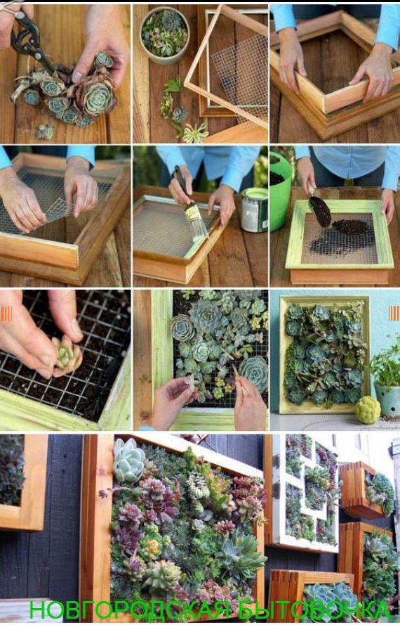 НОВГОРОДСКАЯ БЫТОВОЧКА | Вертикальные сады – декор своими руками | http://stroika-novgorodkrai.ru