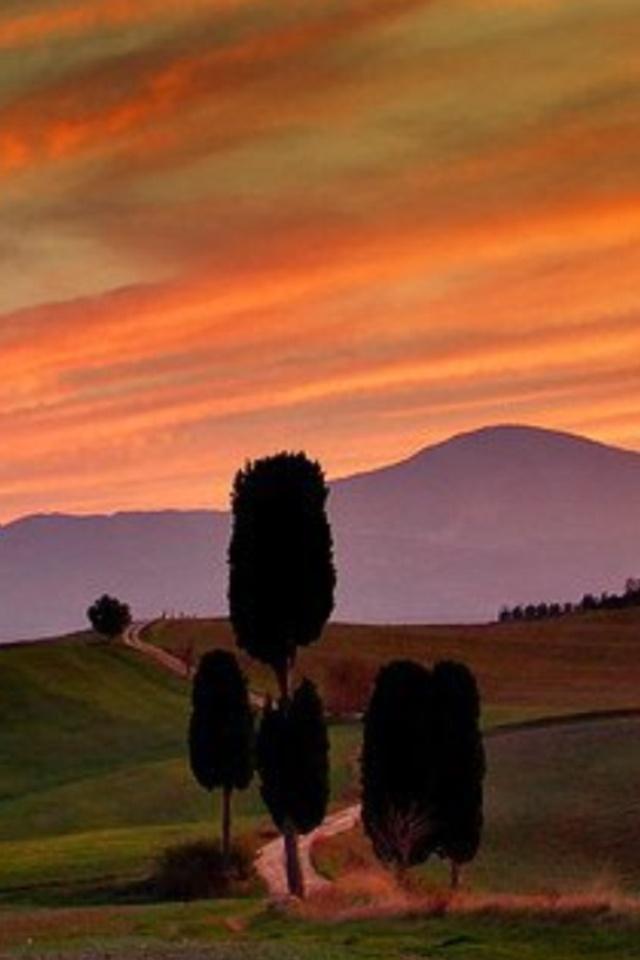 Toscana  -  val d'Orcia  -  Primavera