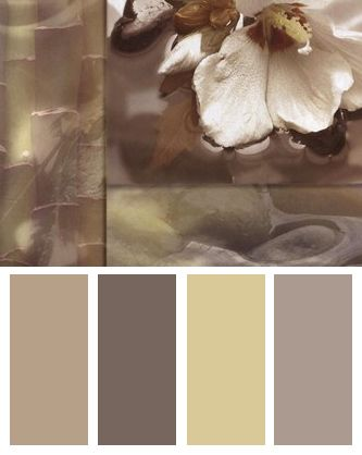 Zen Elements III Color Palette