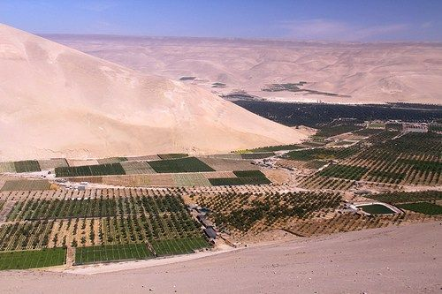 San Miguel de Azapa: Descubre la cultura chinchorro en el valle del desierto