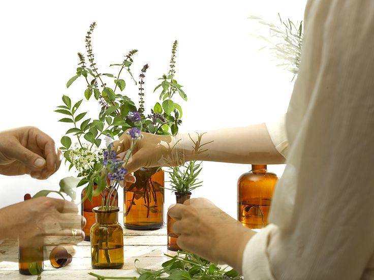 Back to nature. Organic cosmetics