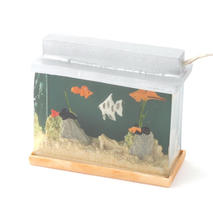 Best 25 small fish tanks ideas on pinterest freshwater for Best small fish tank