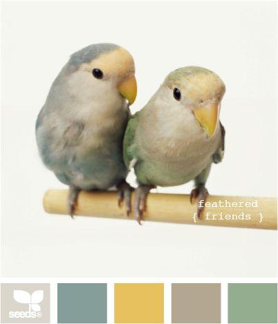 feathered friends: Colors Pallets, Colors Combos, Kitchens Colors, Design Seeds, Bedrooms Colors, Bedrooms Design, Colors Palettes, Colors Schemes, Feathers Friends