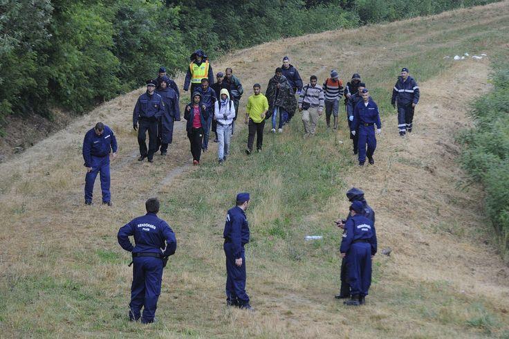 Egyre több migráns próbál Magyarországra jutni. 52 migránst fogtak a csongrádi rendőrök http://111hir.blogspot.ro/2016/01/egyre-tobb-migrans-probal.html
