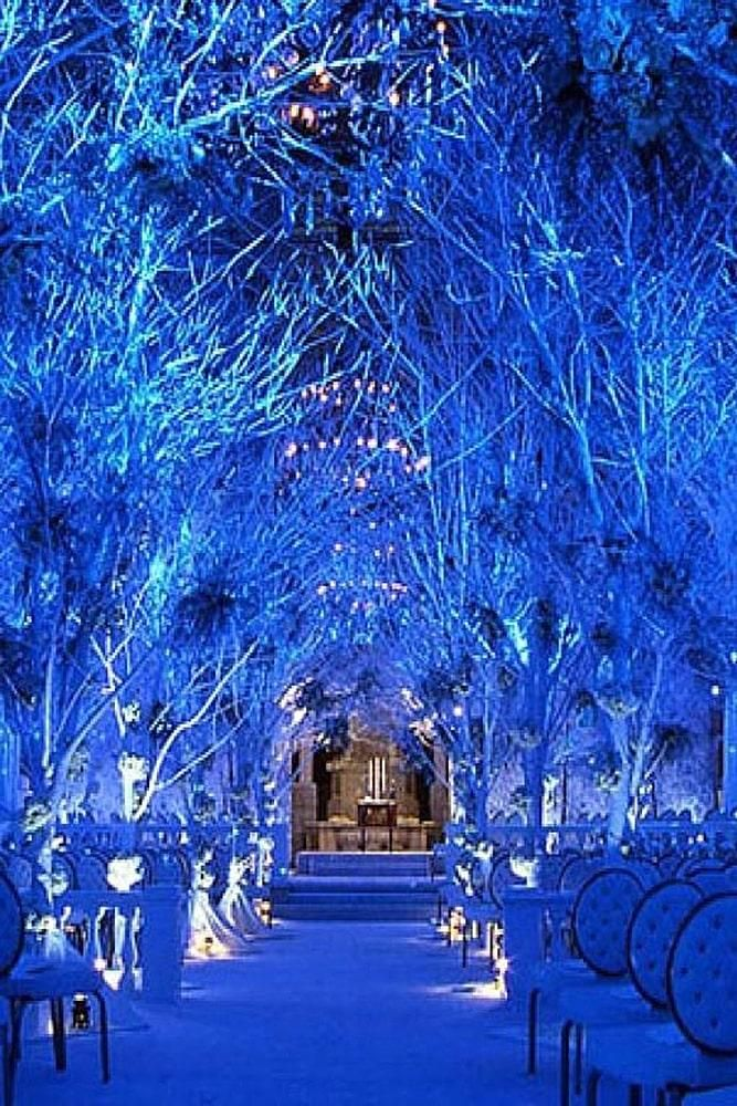75 Best Wedding Theme Ideas In 2020 2021 For Any Taste And Style Winter Wonderland Wedding Theme Wonderland Wedding Decorations Winter Wonderland Wedding Decorations