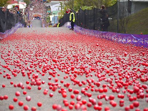 Only in Dunedin, New Zealand will you find the world famous annual JAFFA ROLL! Where numbered balls of chocolate are sent flying down the steepest street in the world