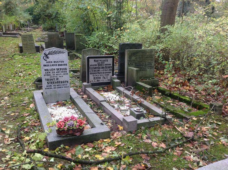 Begraafplaats Esserveld Haren. Deze Franse bloemen van keramiek (majolica) zijn op verschillende plaatsen in Nederland te vinden. Een blijvende herinnering. Kijk voor meer bloemen op de website van Keramiek voor buiten