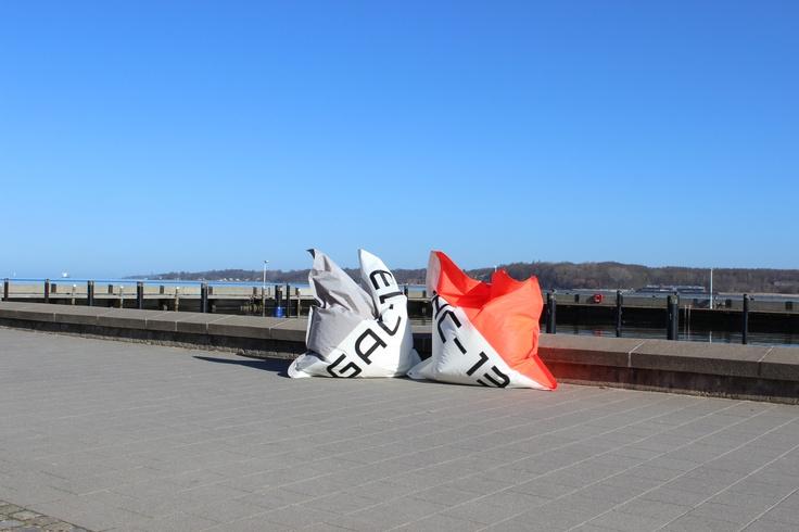 Korallroter und Delfingrauer KüstenThron vor dem Kieler Yachtclub