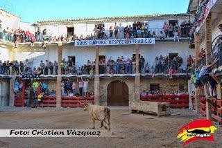 torodigital: Terminan los festejos taurinos en l'Aldea
