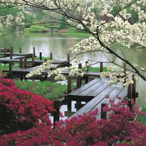 St. Louis Botanical Gardens :)