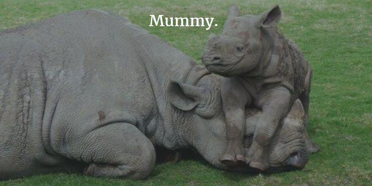 Mummy.