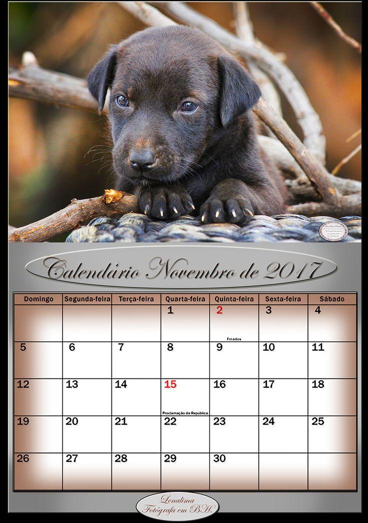 CalendarioNovembro2017-calendarios2017-lenalimafotografaembh-lenalimafotosbh-