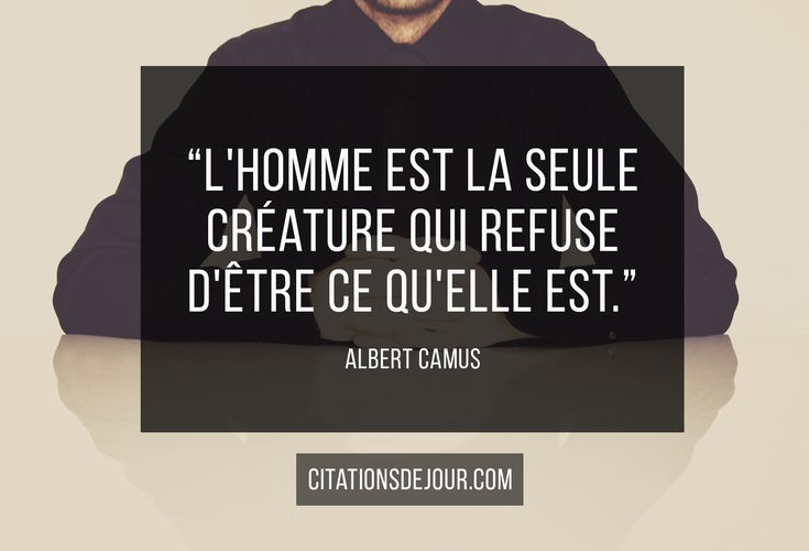Citation automne albert camus