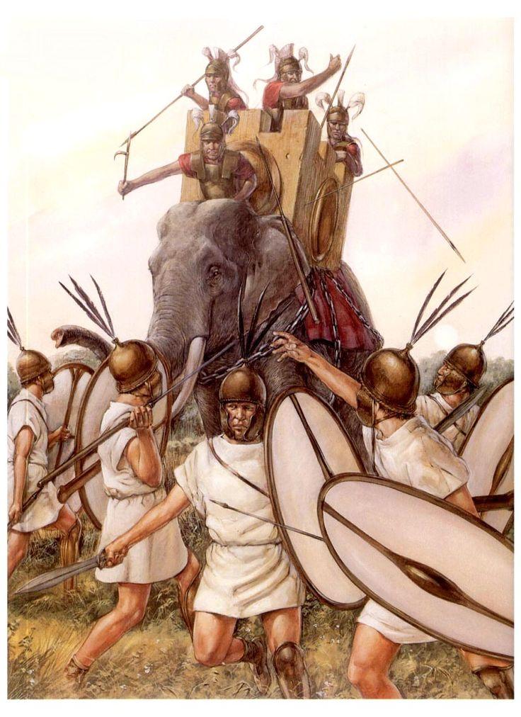 Republican Roman Legionnaires (hastati) facing one of Pyrrhus of Epirus's war elephants 280-275 BCE.