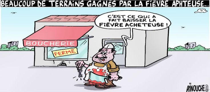 Fièvre aphteuse en Algérie