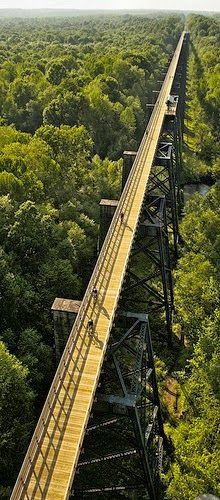 The Infinite Gallery : High Bridge Trail State Park - what a great looking ride above the trees by bike