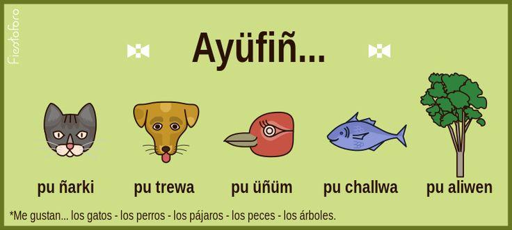 Fiestoforo: Imágenes para vocabulario en Mapudungun!