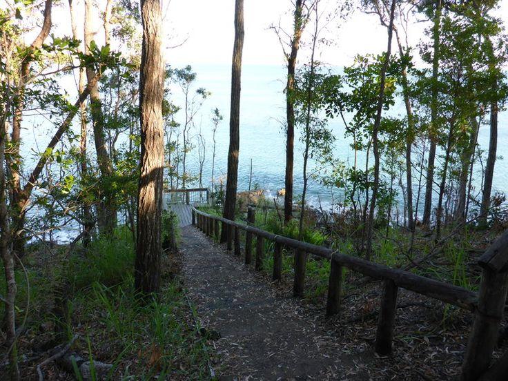 National Park Track - Noosa