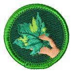 Spoof Merit Badges | Boy Scout Store Spoof Merit Badges