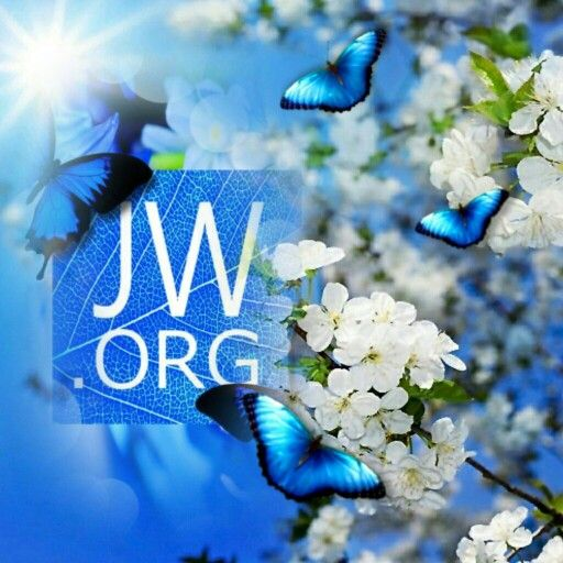 Love this website: JW.org. Is so helpful for people of any religion, background, and culture--and I love how the Bible-based information is available in hundreds of languages. Excellent guidance for families, adults, teens, children, and on about every topic, including grief, stress, and how to deal with difficult times, economic hardships, and about any topic + the positive things to come. Love it.