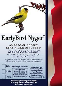 American Niger Seed Company | American Grown Live Niger Seed