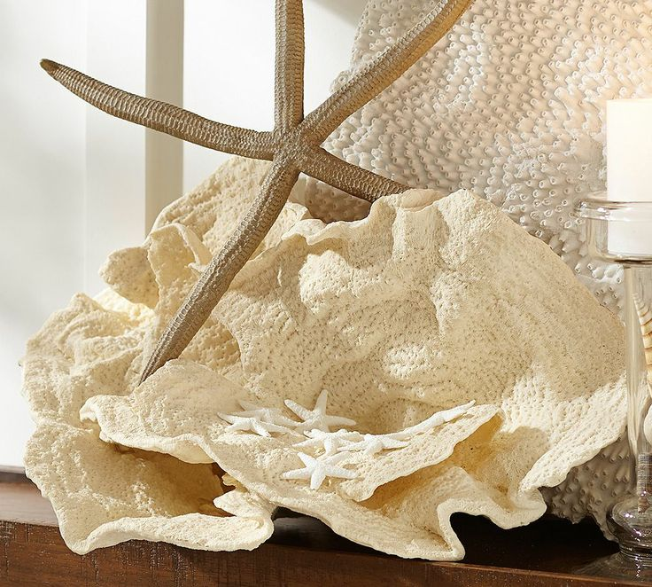 XL Broad Wave Coral  |  Pottery Barn Australia