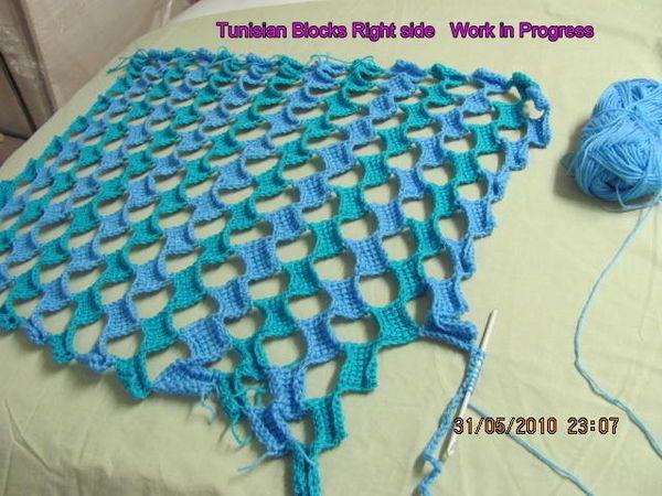 505 Best Tunisian Crochet Images On Pinterest Tunisian Crochet