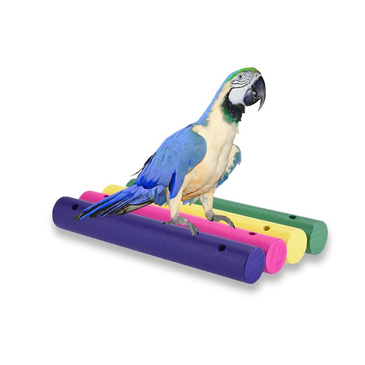 Creative Parrot Toys DIY Accessories Colorful Cylinder Toy  for Parrots / Pigeons / Other Birds Vogel Speelgoed 4pcs/bag