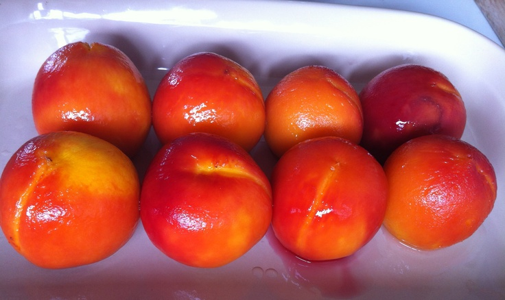 Poached Peaches, Armadale VIC, December 2012