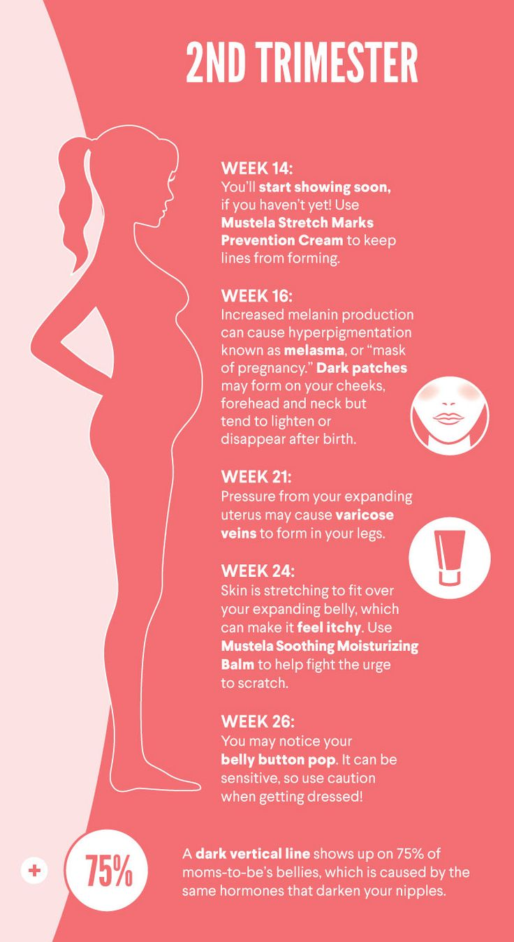 Second trimester is when a lot of the body changing starts. Here's what to expect!