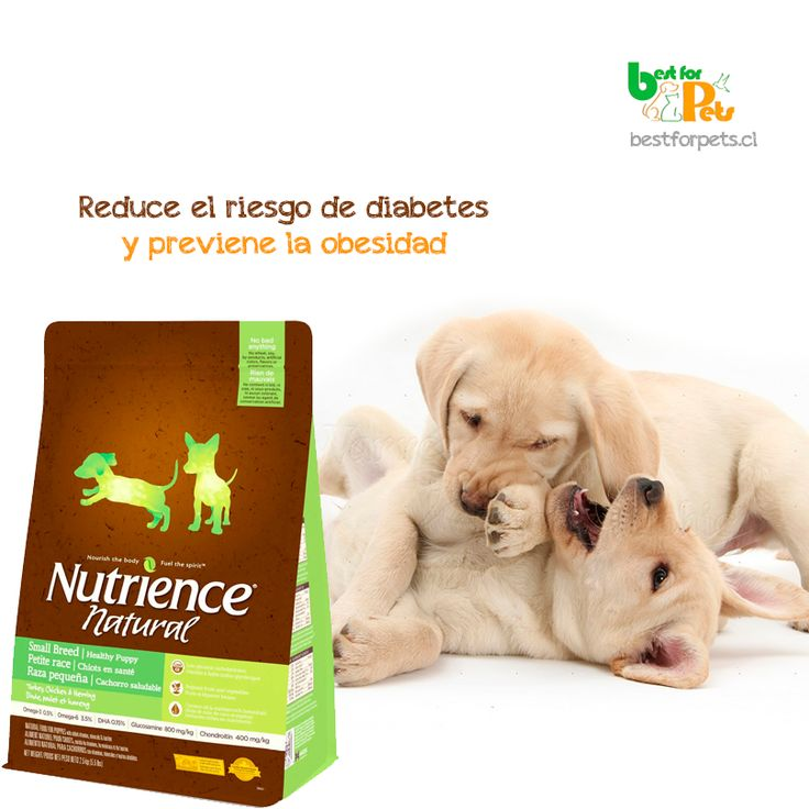 Porque cuidar a tu perrito es muy importante, prefiere un alimento que se preocupa de su salud! Conoce aquí Nutrience Natural Healthy Weight Small Breed Best for Pets