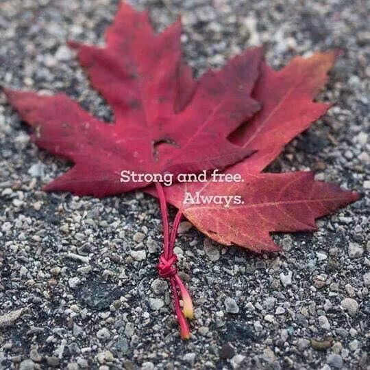 Strong and free Always!